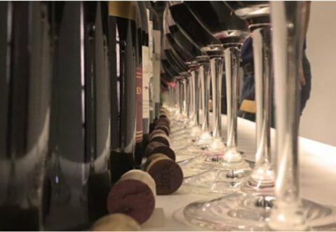 Jak vybíráme víno?